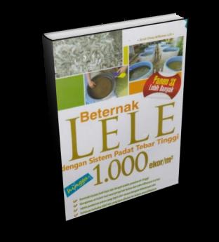 BETERNAK LELE DENGAN MENEBAR BENIH 1000 EKOR/M2